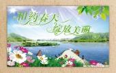 春天的故事 - 张宗亮 - zhangxianbo-sj的博客