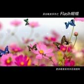 flash���