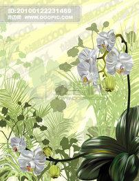 莲花/矢量兰花植物